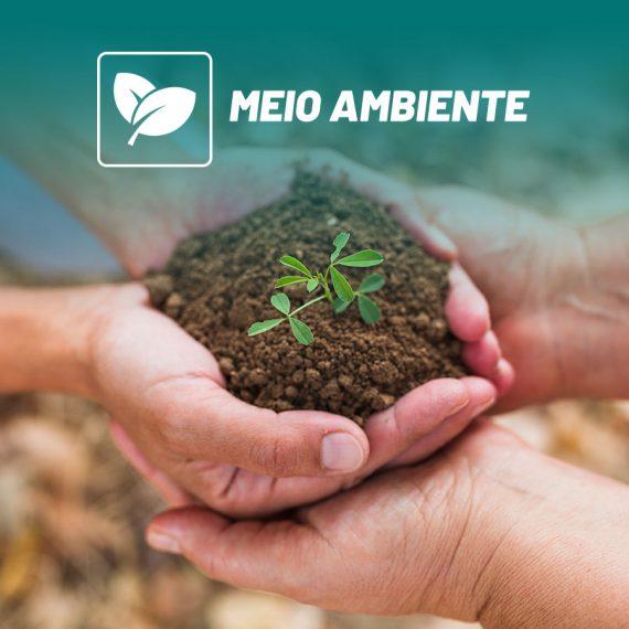 ícone do curso de meio ambiente com mão segurando planta no fundo